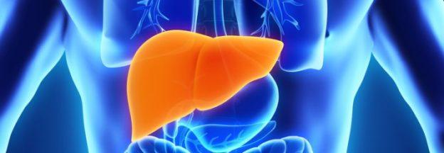 Protectoarele hepatice, între mit şi eficienţă